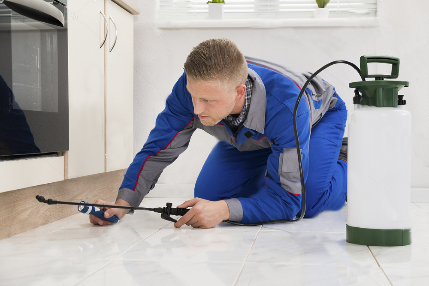 Pest Control in Tyler, Texas
