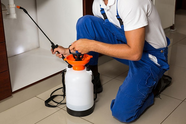 East Texas Home & Office Pest Control